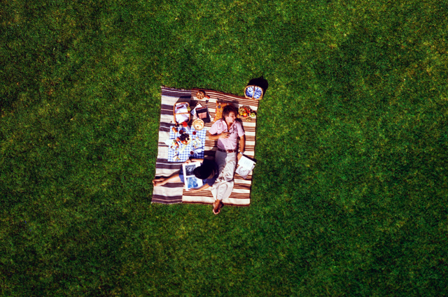 An aerial shot of Ray and Charles Eames having a picnic on bright green grass