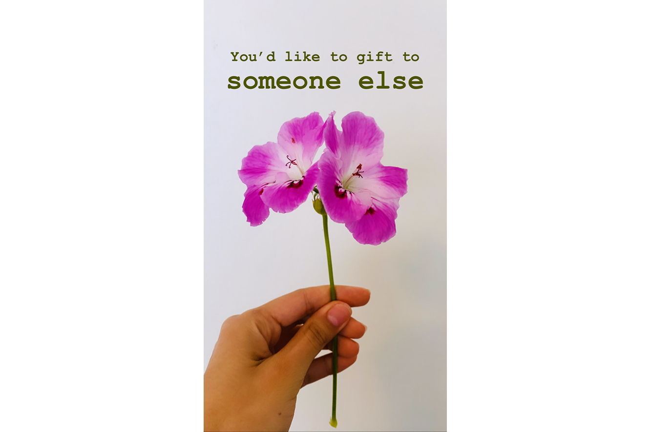 A hand holding a purple flower with text that reads: You'd like to gift to someone else