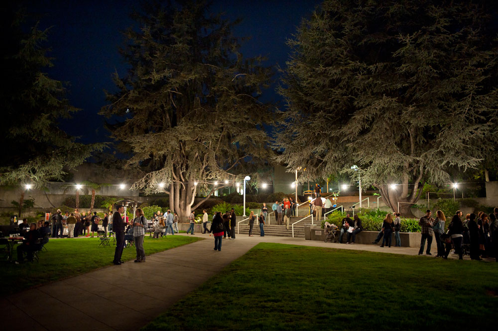 Lights strung up in the OMCA gardens with people socializing