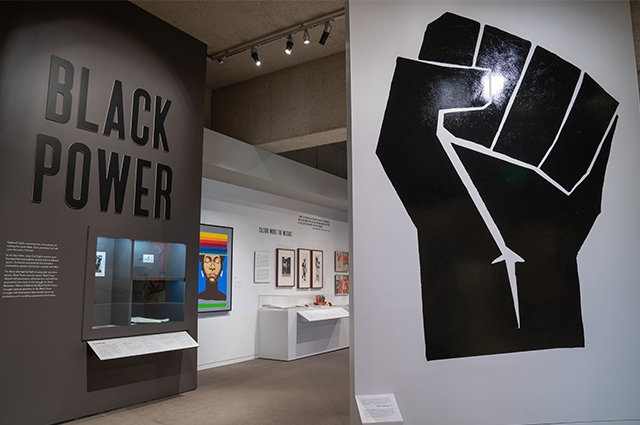 Main entry into the Black Power exhibit.