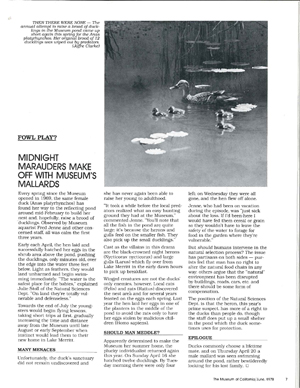 "The 1978 artcle from OMCA's member magazine on ""Fowl Play."""
