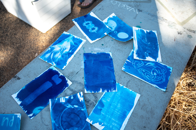 Several cyanotype cards lie on the ground with different images on them