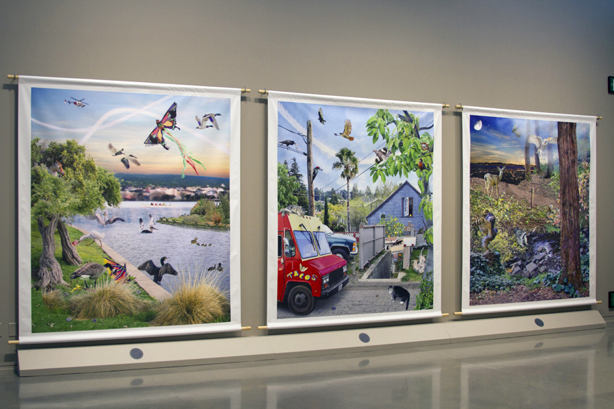 Susan Felter's Our Nature is featured in Who is Oakland?, an exhibition exploring Oakland's many dimensions through the work of artists who live and work here, and love this city, at Oakland Museum of California April 11 through July 12, 2015.