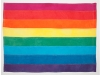 A rainbow flag with 8 colors