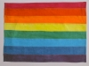 An 8 colored rainbow flag
