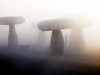 3 large mushroom-shaped sculptures in a dusty desert