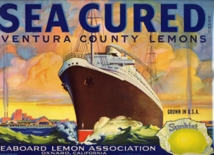 "Fruit crate label, ""Sea Cured"" brand, 1937. Collection of the Oakland Museum of California, Museum Purchase."