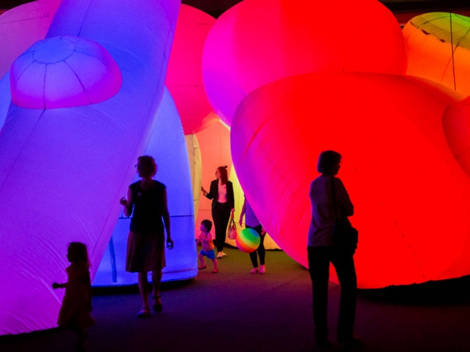 Museum visitors enjoying Nature's Gift, an immersive exhibition, during Friday Nights at OMCA