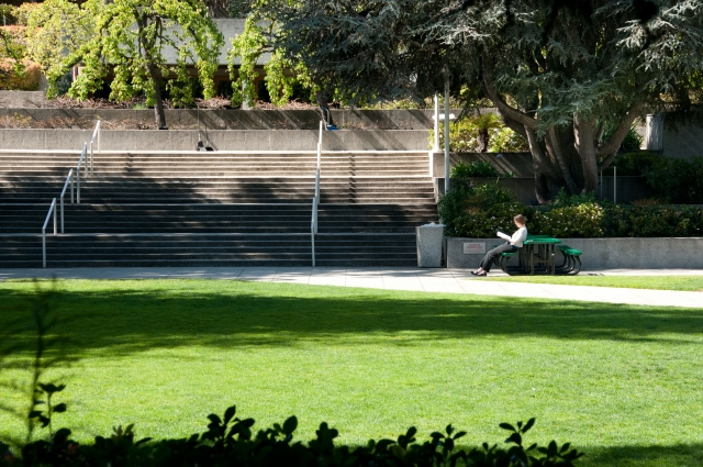 Grand steps and yard at the OMCA gardens