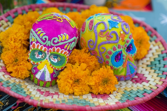 Two colorful sugar skulls sitting on a table with orange flowers at OMCA's Dia de Los Muertos Celebration