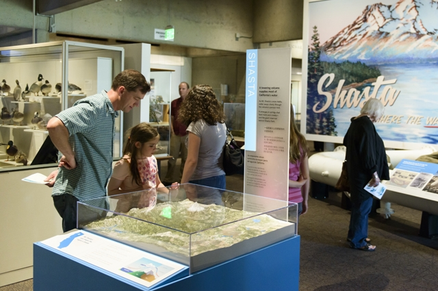 A family explores the Natural Sciences gallery