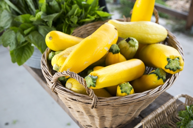 Image of yellow squash in a woven basket