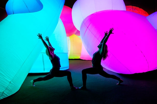 Showga presents a unique yoga experience inside OMCA's exhibition Nature's Gift