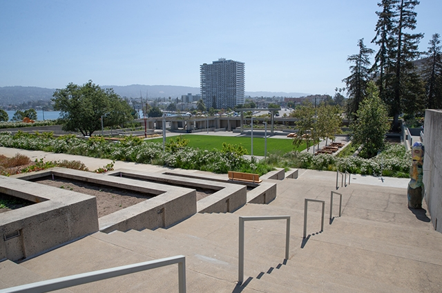 A view of the new OMCA gardens from up on the steps.