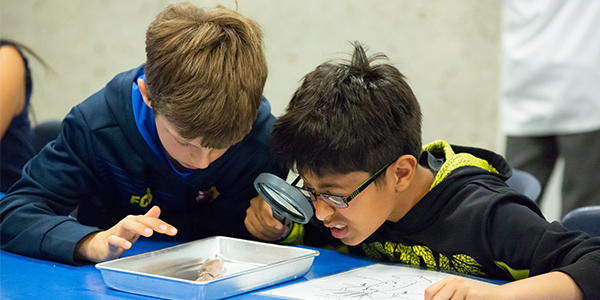 Two kids observe a squid with a microscope.